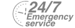24/7 Emergency Service Pest Control in Ealing, W5. Call Now! 020 8166 9746
